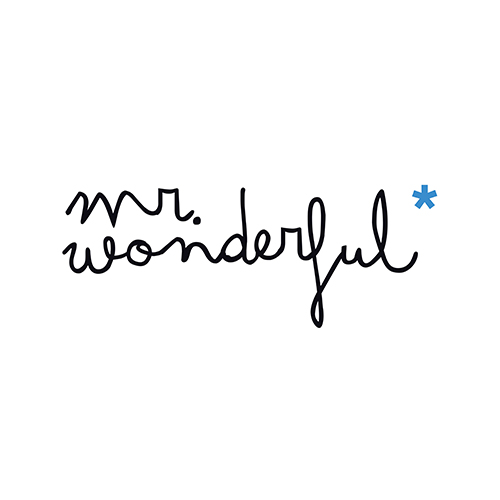 Mr. Wonderfull